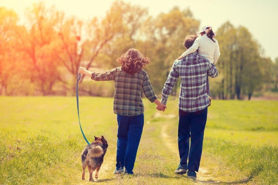 5 Benefits of Walking Your Dog